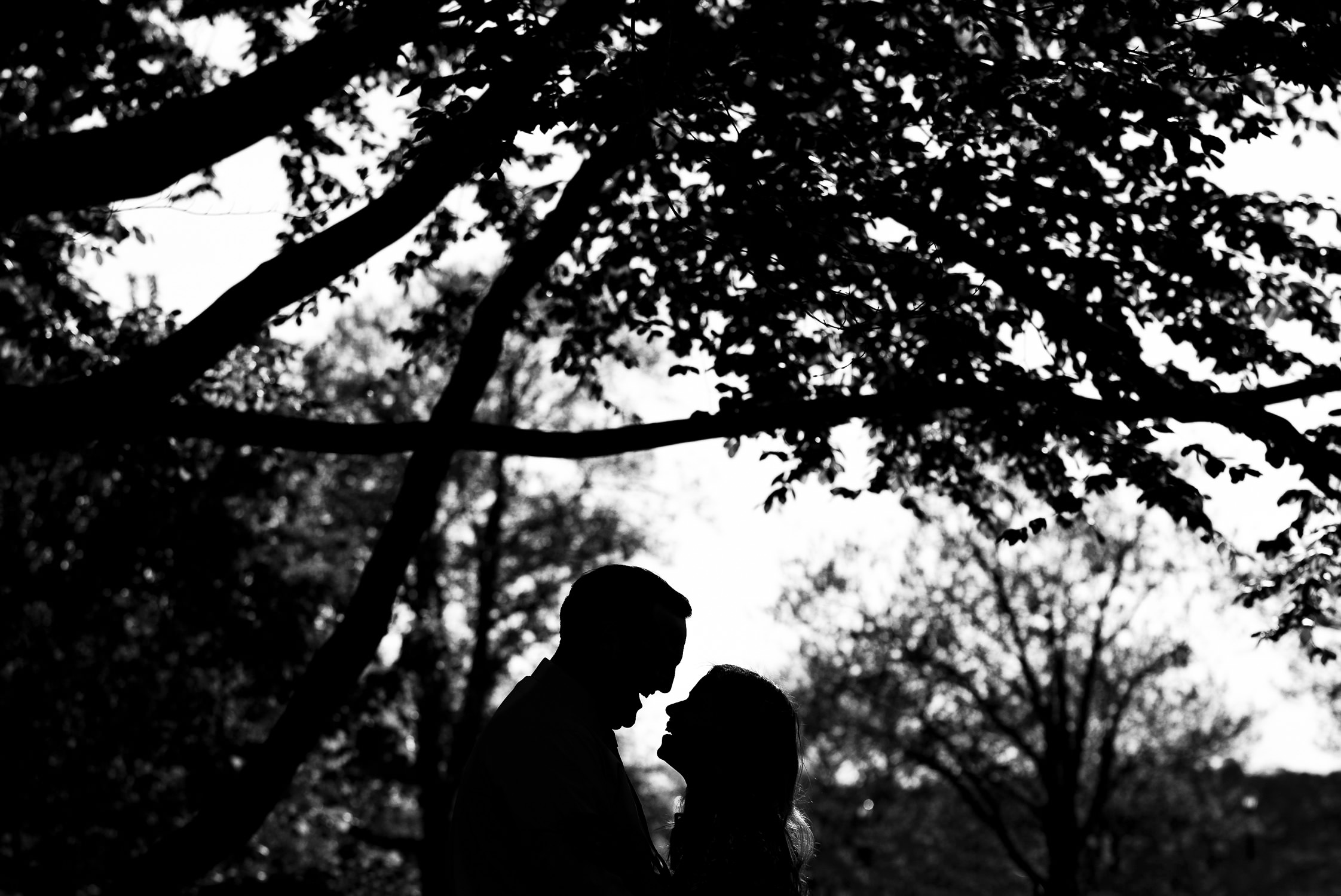 A silhouette of a couple laughing open mouth underneath a tree