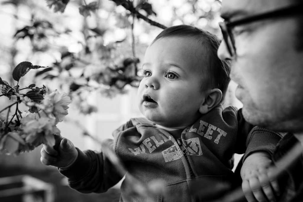Black and white photo of toddler boy with dad touching a flower during rhode island family pic session.