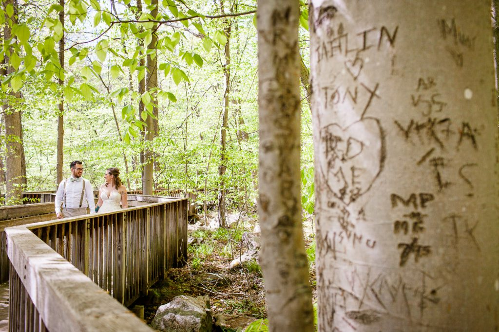 A tree with initials and hearts carved into it frames a photo of the bride and groom walking together down a boardwalk
