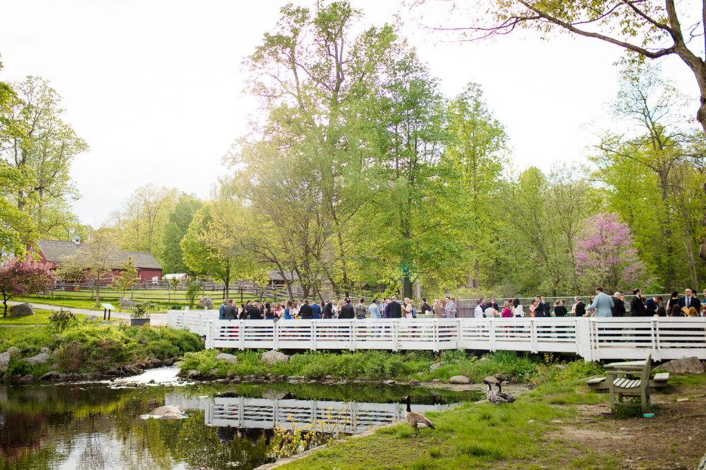 A wedding cocktail reception at the otter pond at stamford nature center