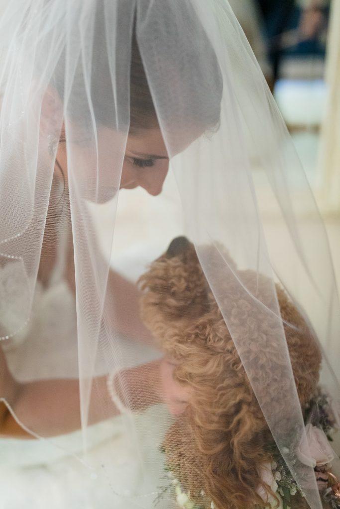 A bride kisses her dog under he wedding veil