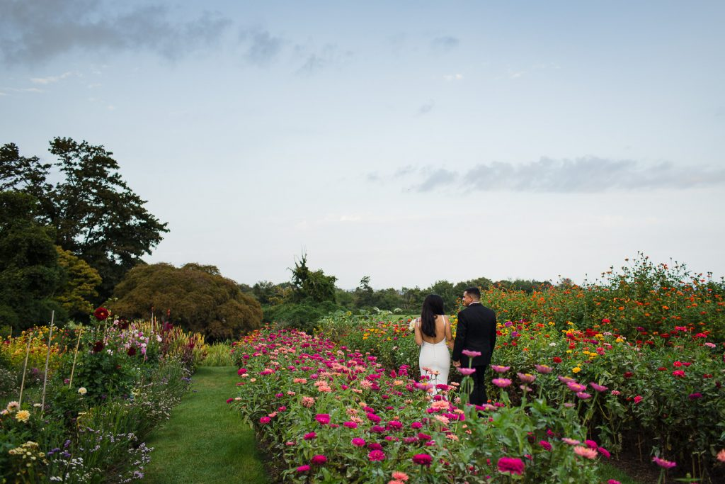 Formal wedding photos in the cuttings garden full of dahlias at harkness memorial park