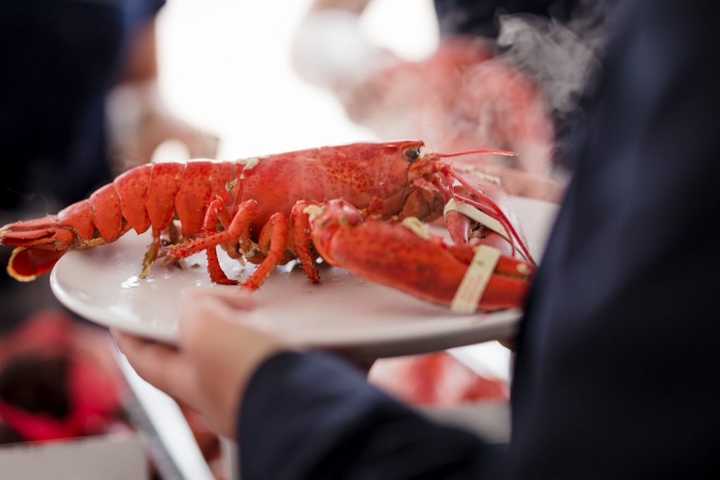 A lobster being served steaming on a place at a clambake cape cod wedding