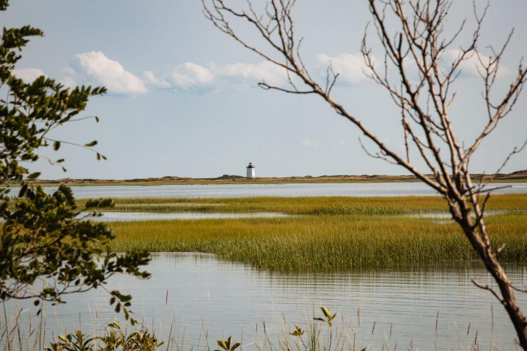 A view of the marsh and woods end lighthouse in Provincetown Cape Cod