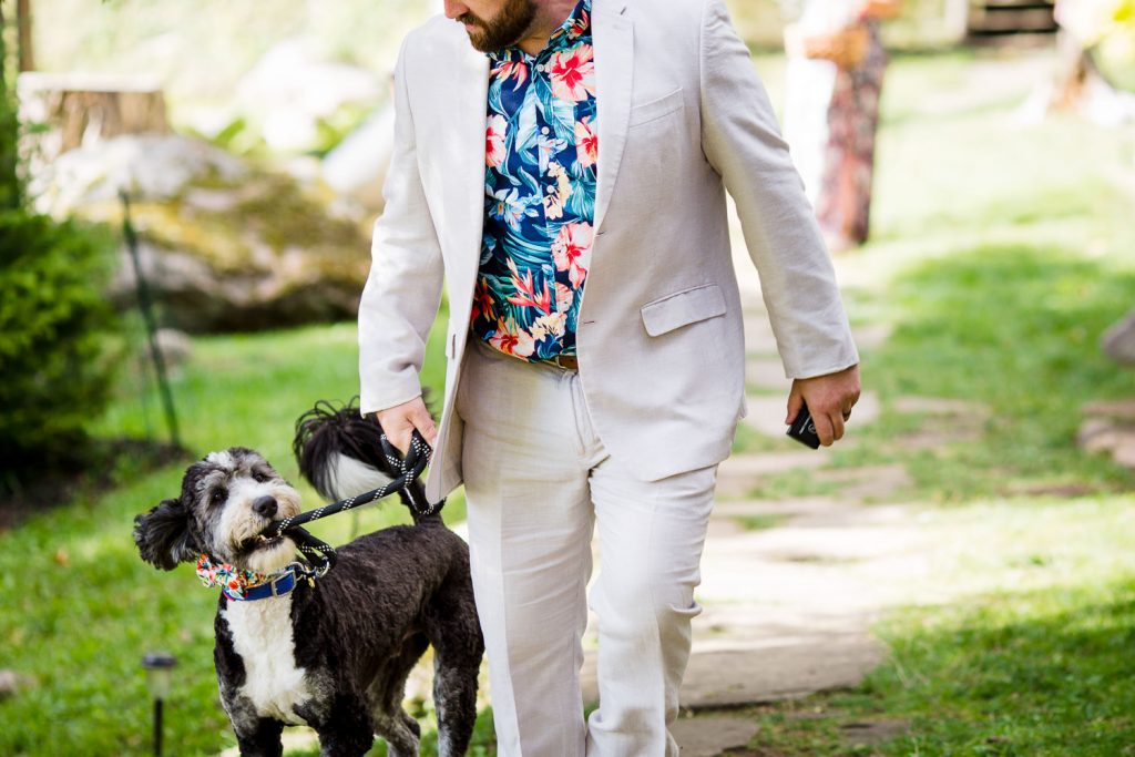 A dog tries to hold his own leash as his handler walks him down the aisle